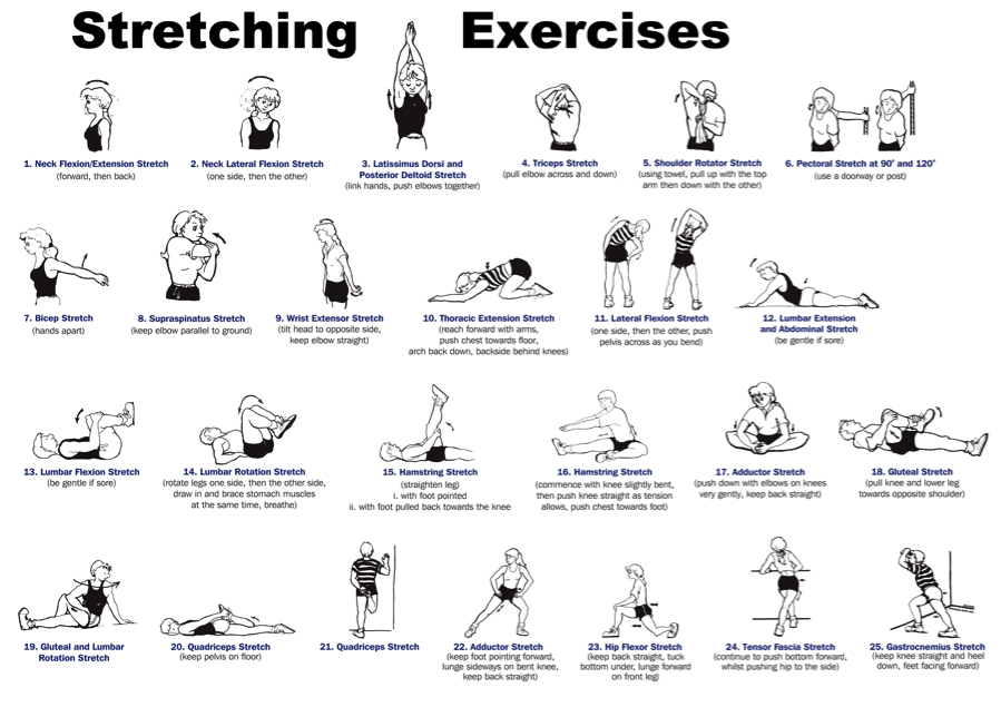 Why is Stretching So Important? - Better Health For Women